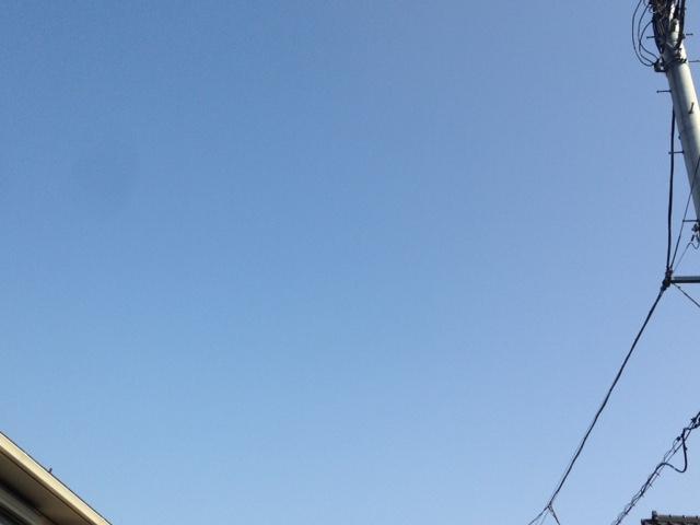 めっちゃいい天気ですね!?