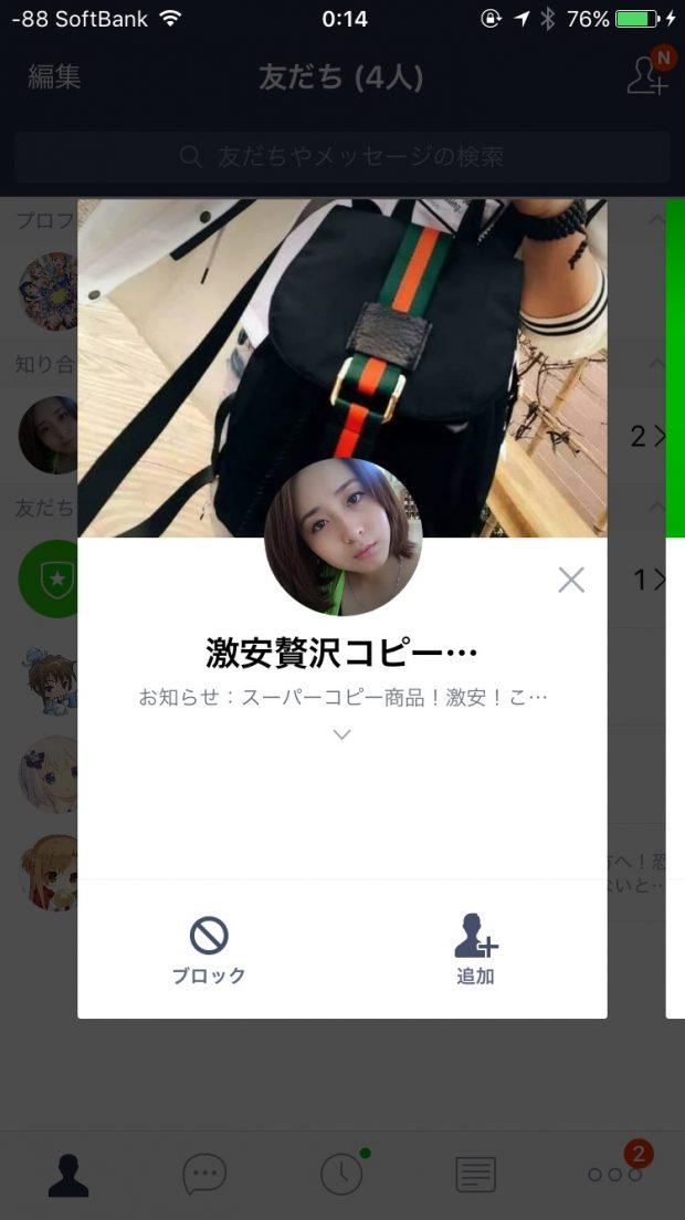 image1_19.JPG