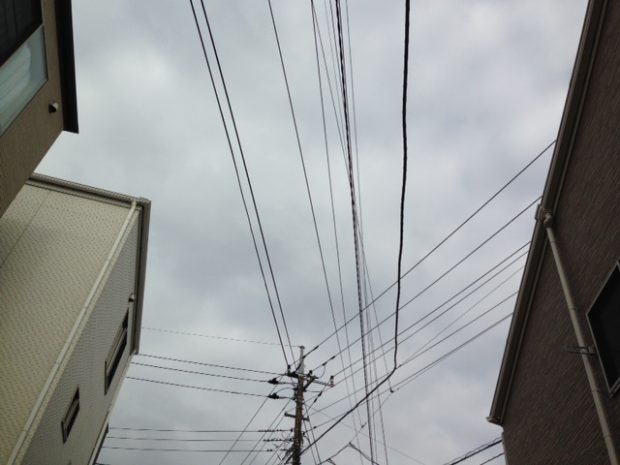 image1_16.JPG